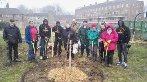 Planting trees in our community